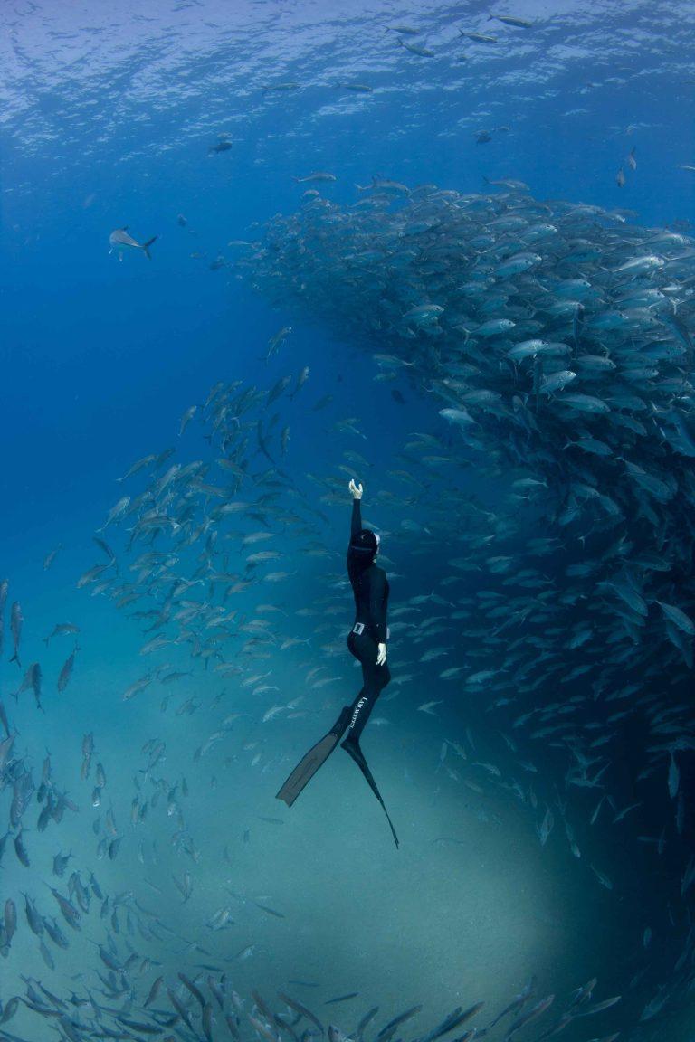 Hanli Prinsloo swimming in the sea